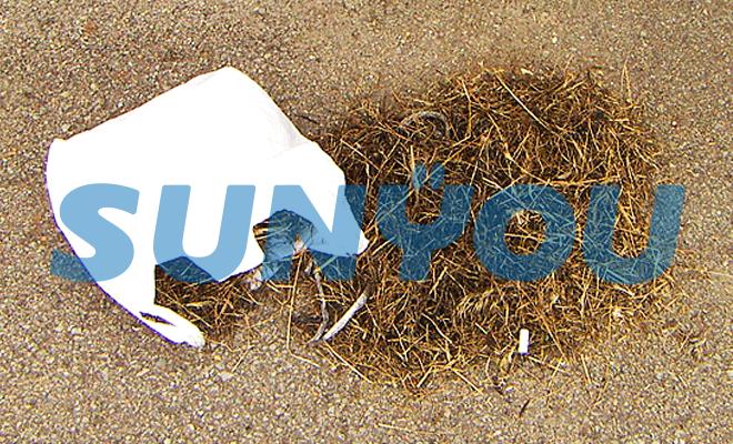 排気管から除去された鳥の巣